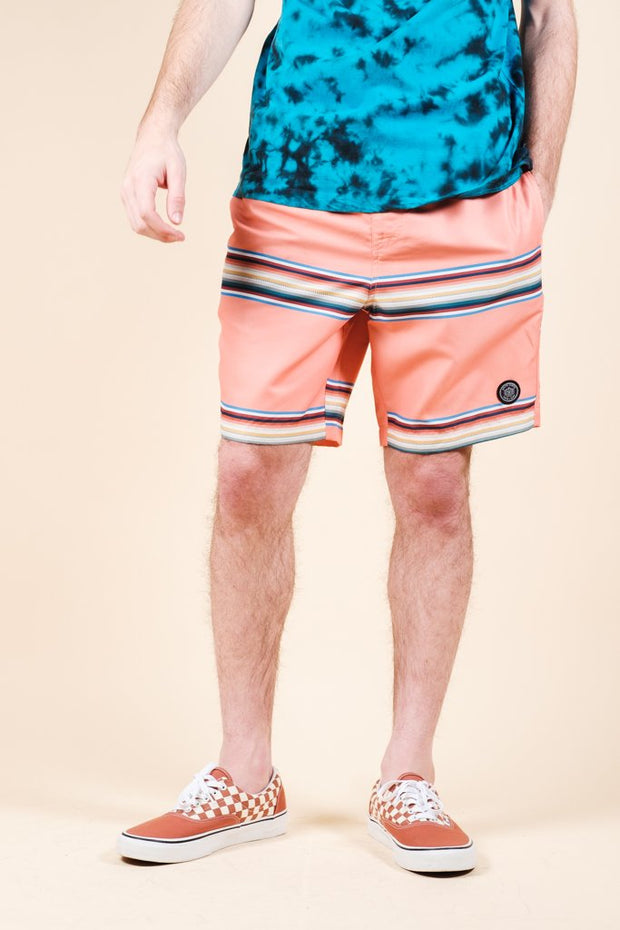 Multi Striped Swim Trunks