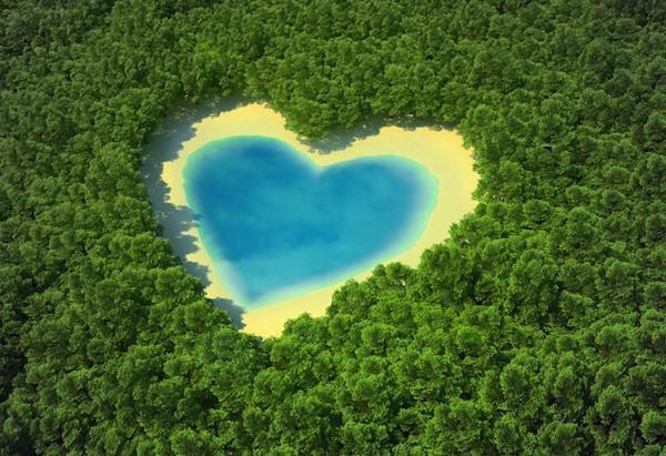 Celebrate a Green Valentine's Day This Year