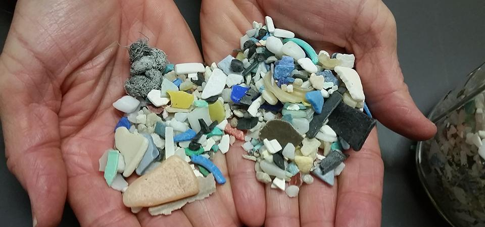 How Microplastics Adversely Affect The Environment
