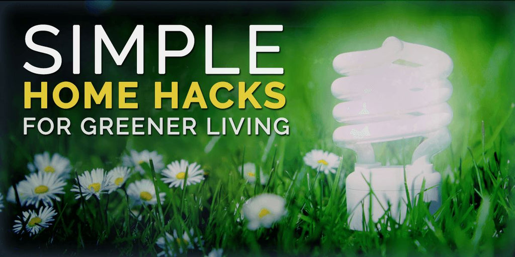 Simple Home Hacks for Greener Living