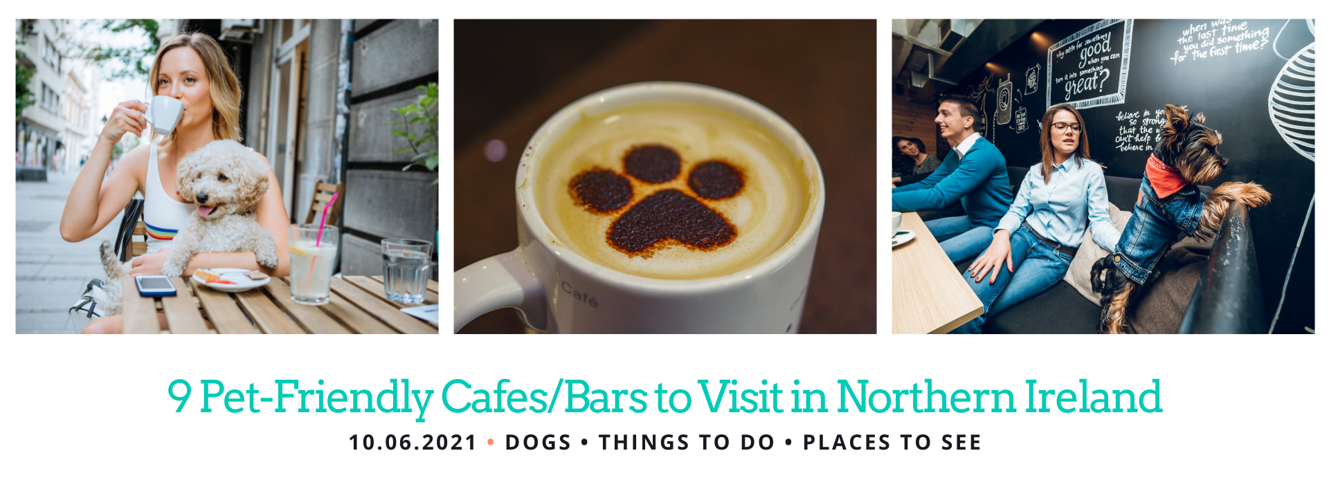 Places to Visit with your dog in Northern Ireland