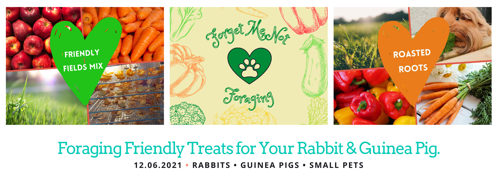 Foraging Friendly Treats for Small Pets