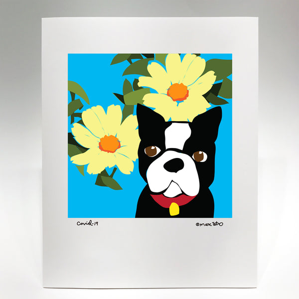 Boston Terrier with two flowers - Covid-19