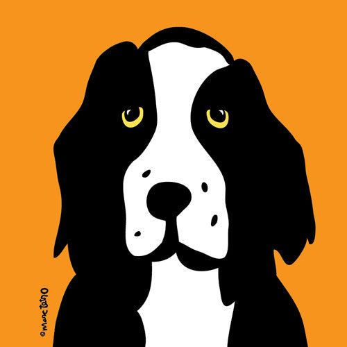 Springer Spaniel on Orange Print