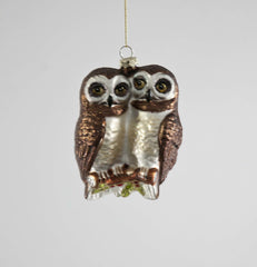 "Katherine's Collection Into The Woods Collection Twelve Assort 4"" Owls Sitting On Branch Glass Ornaments Free Ship"