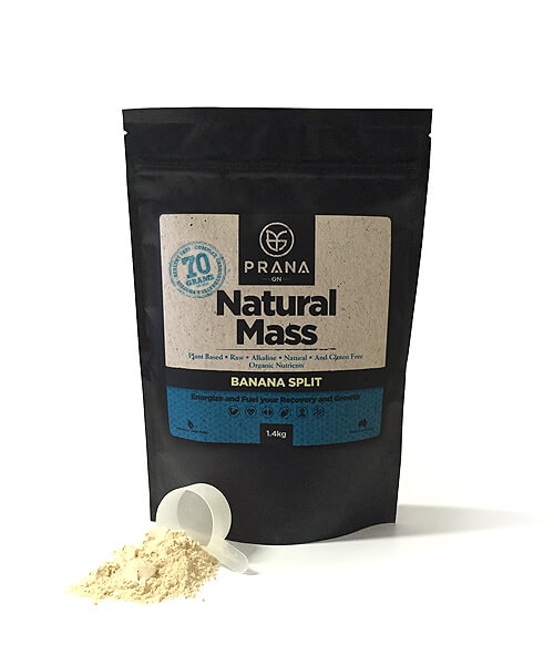 PRANA ON NATURAL MASS PROTEIN