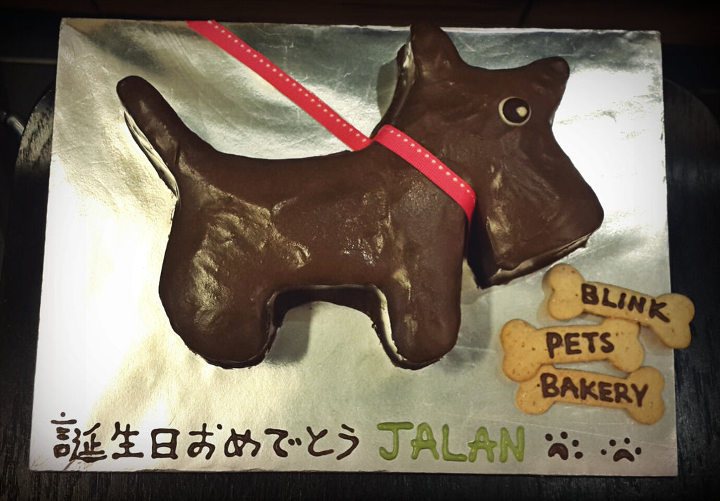 Dog Shape Cake with 3 Flavors