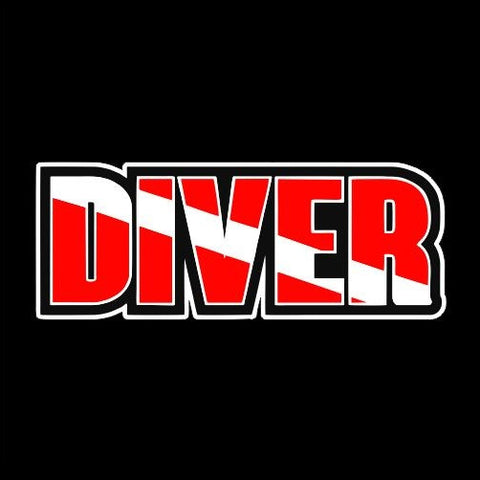 Diver with dive flag inside