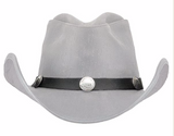 Buffalo Nickel Hat Band