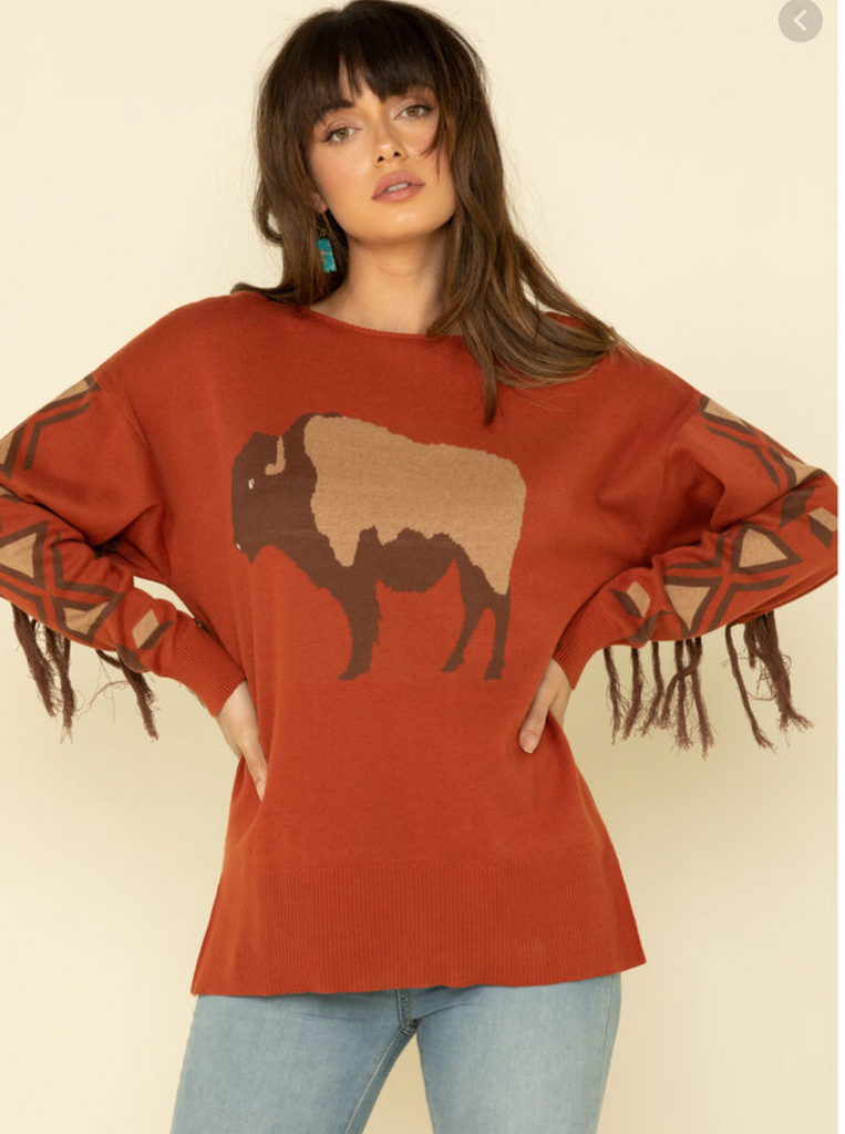 Buffalo Graphic Sweater with Fringe