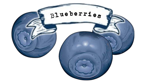 Blueberry - INS Fruit Series