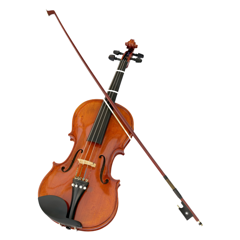 Four, 45 Minute Violin Lessons, Gift Certificate