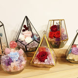 Preserved Flowers & Terrarium
