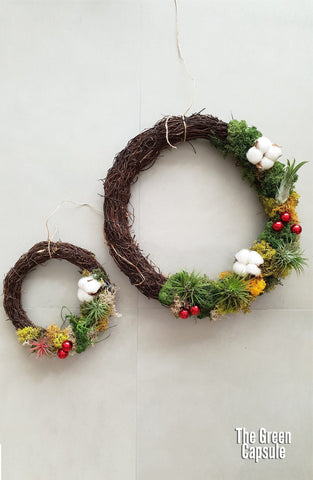 Airplant Christmas Wreath Workshop