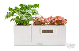 Modular SMART Garden - Magic Clock