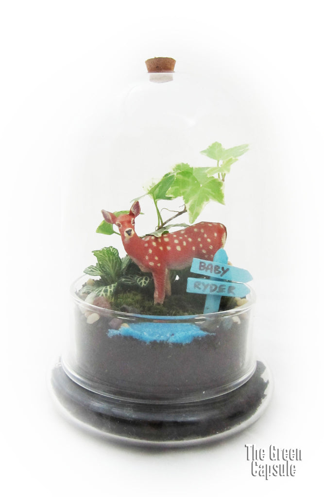 Terrarium - Deer in the forest with water