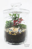 Dog swimming in a Terrarium