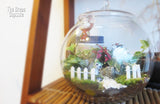 Terrarium - Stacy with decor