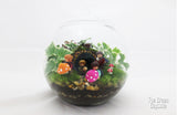 Lord of the Ring Terrarium