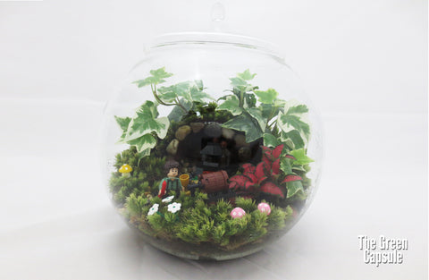 Frodo (Lord of the Ring) terrarium
