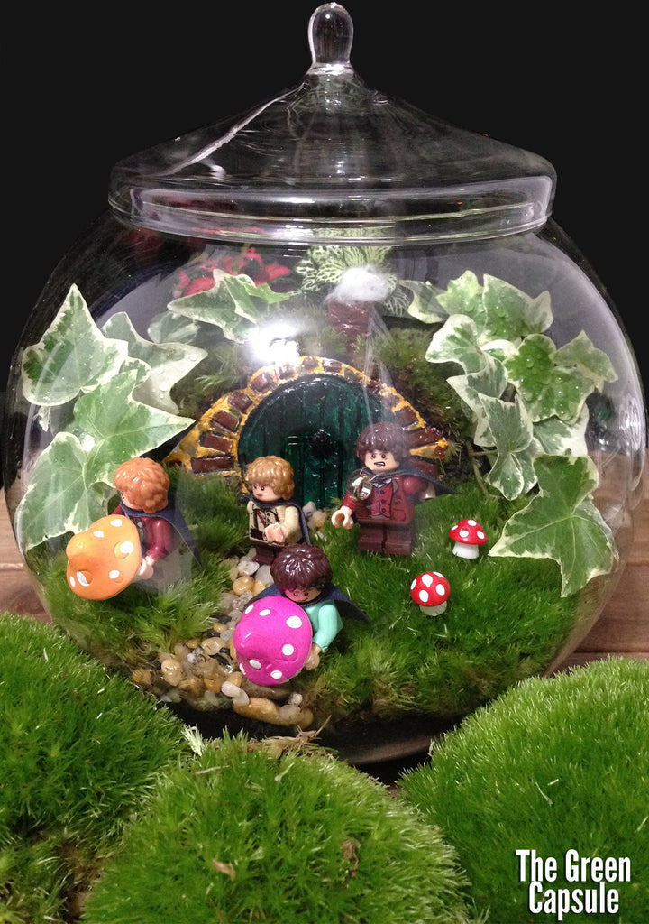 Lord Of The Rings Christmas Ornaments.Lord Of The Ring Terrarium The Green Capsule