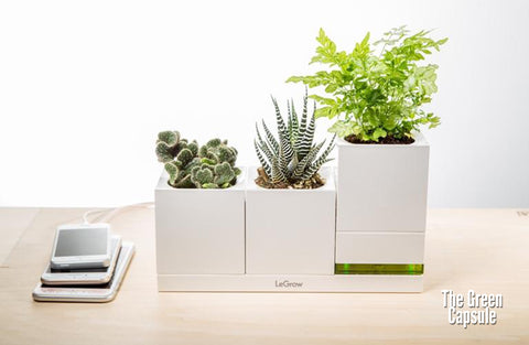 Modular SMART Garden - Family Green Quick Charger