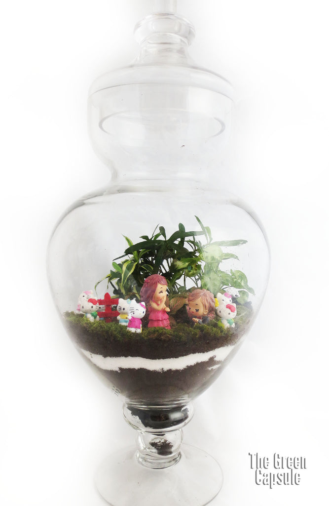 Terrarium - Proposal