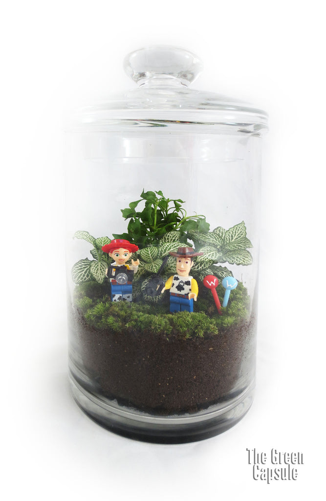 Terrarium - Woody dating Jessie in the woods