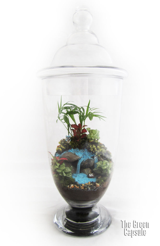 Terrarium - Waterfall