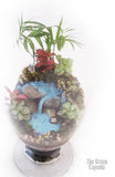 Terrarium - Waterfall top view