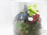 Gandalf, Lord of the Ring, terrarium