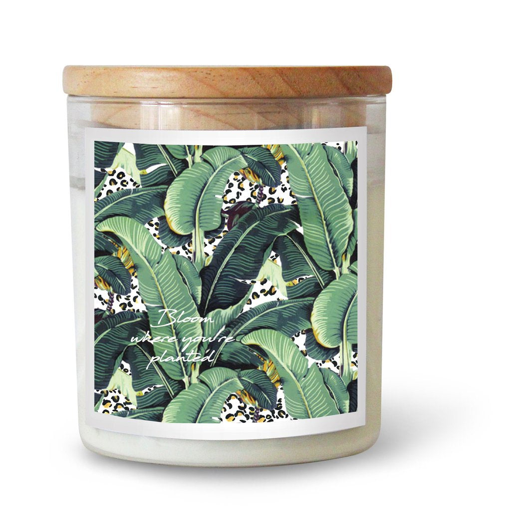 "Ourlieu Collab Jungle Kitty ""Bloom Where You Are Planted"" Candle"