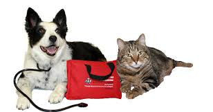 Cat and Dog First Aid