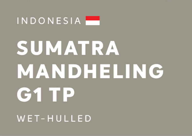 [SENS.COFFEE] Indonesia Sumatra Mandheling G1 TP Wet-Hulled