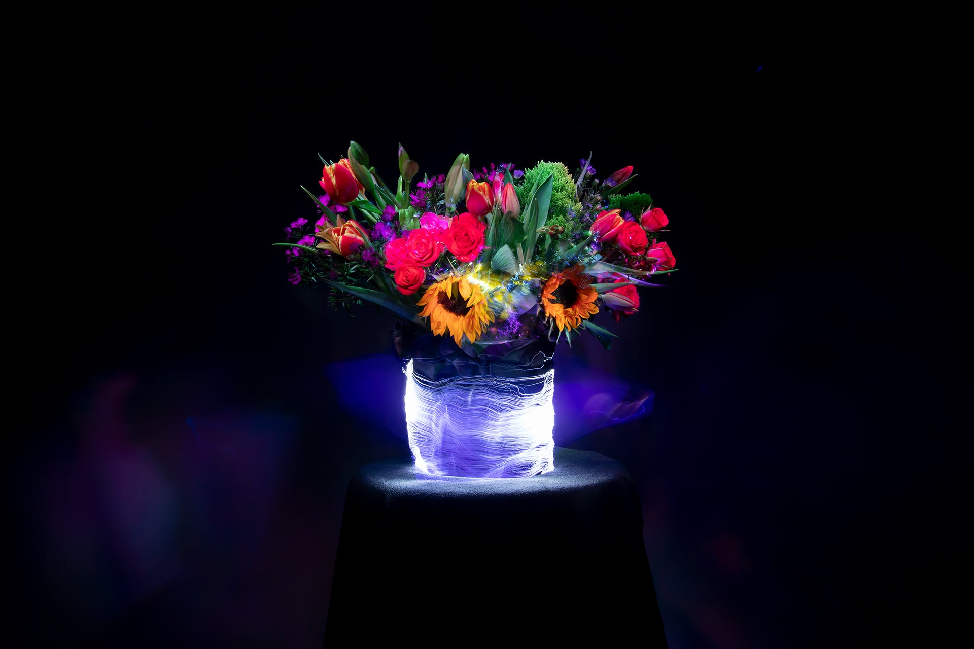 Light Painting of Flowers with Fiber Optic Light Painting Brushes