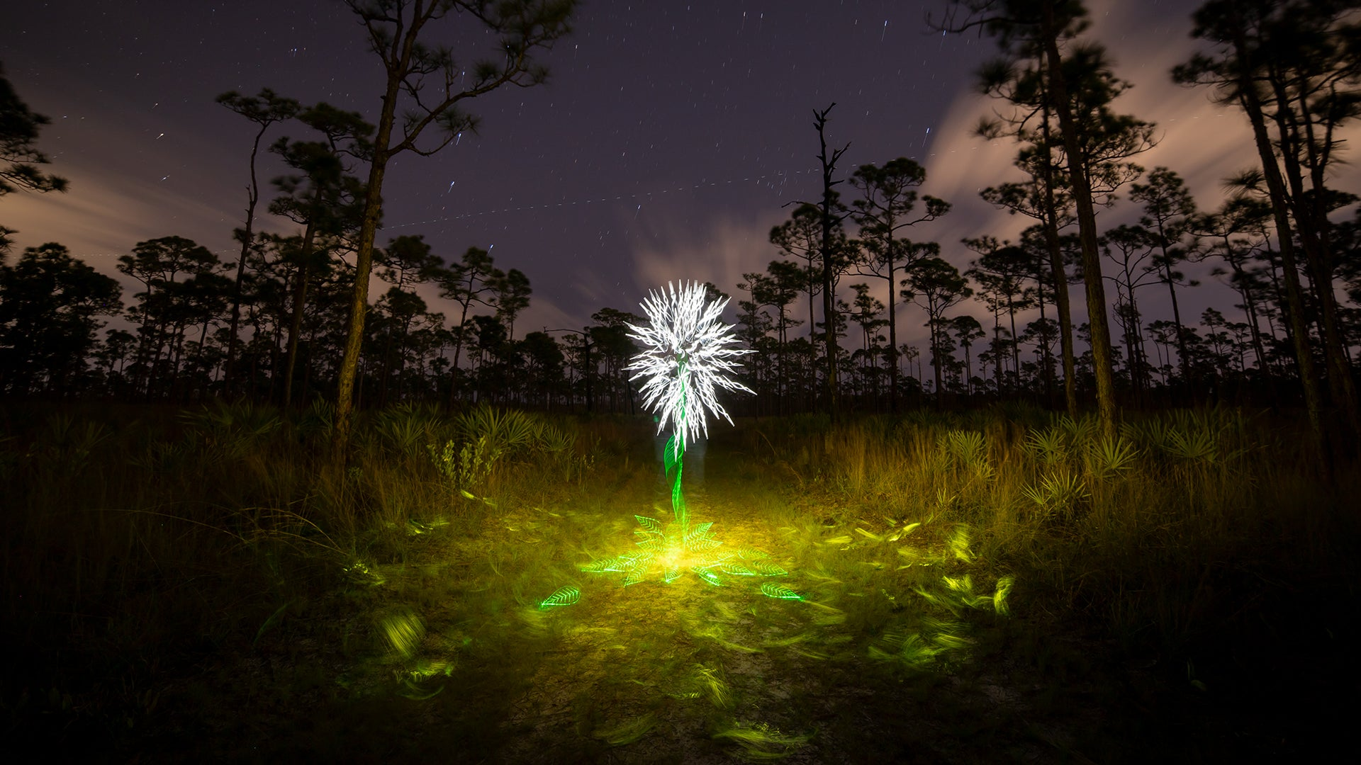 Light Painting, How To Light Paint