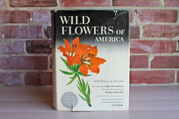 Wild Flowers of America Edited by H.W. Rickett