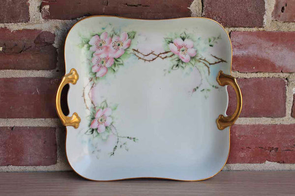 DM Bavaria Porcelain Handled Dish with Hand-Painted Pink Flowers and Gilded Rim