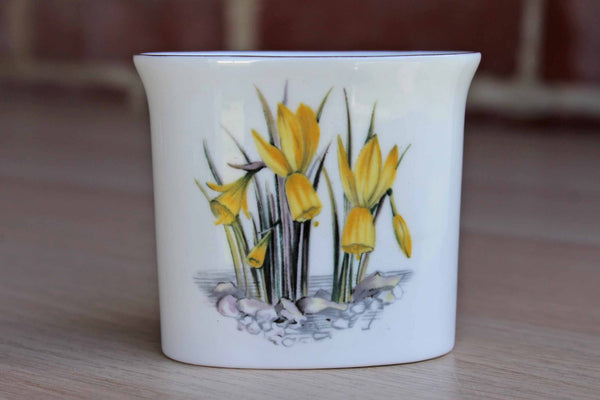 Royal Worcester (England) Bone China Toothpick Holder