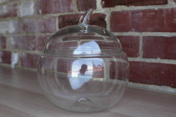 Clear Apple-Shaped Glass Terrarium or Biscuit Jar