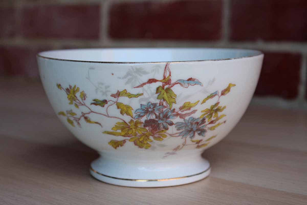Lewis Straus & Sons (Limoges, France) Decorated Bowl