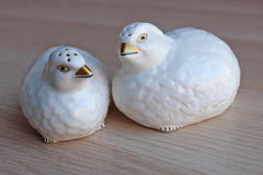 Aynsley (England) Hand Modelled and Painted Fine Bone China Bird Salt and Pepper Set