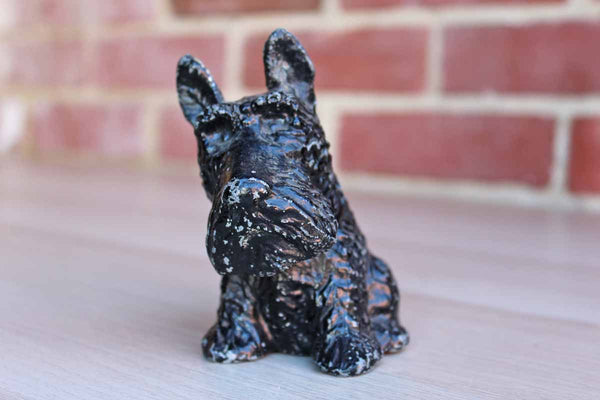 Black Terrier Coin Bank