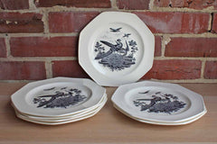 Wedgwood (England) Liverpool Birds 8