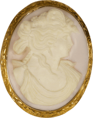 Pink and white shell cameo