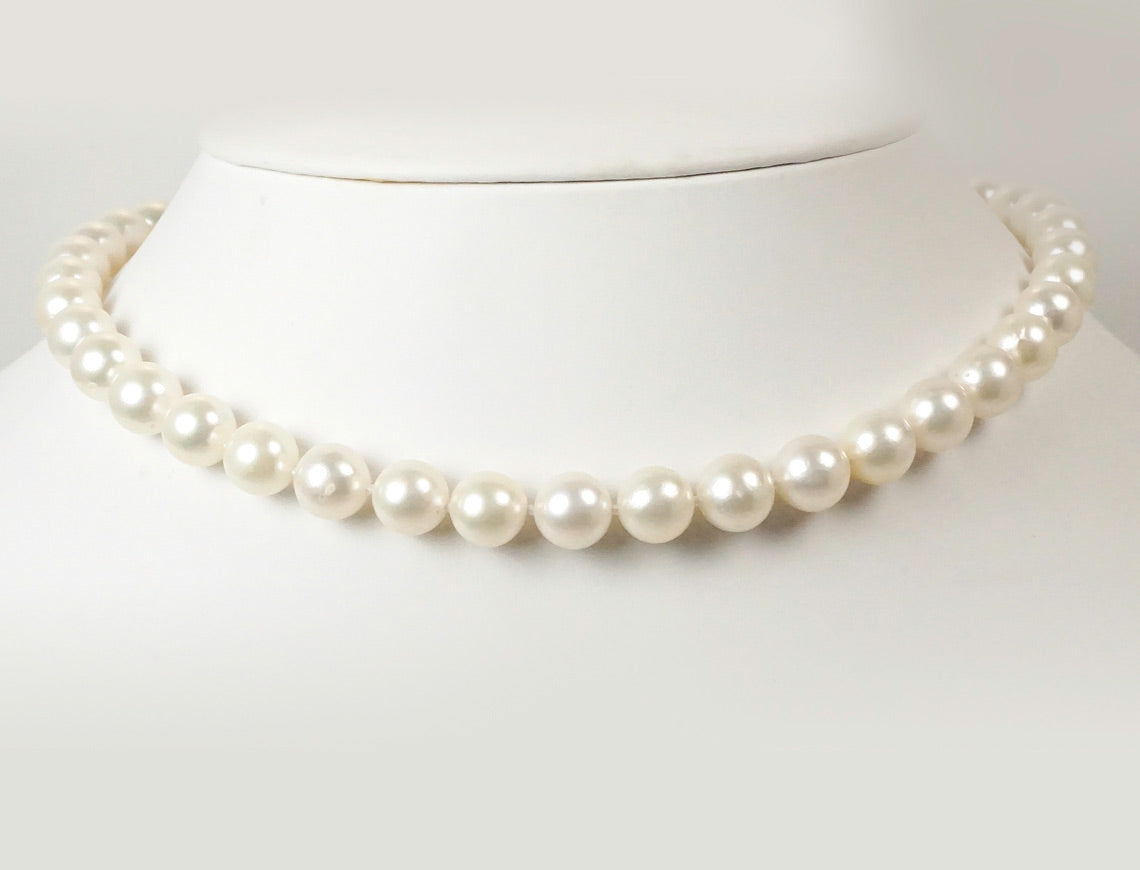 South Sea pearl necklace choker