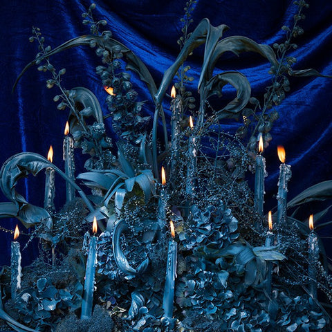 Illuminated Blue Velvet and Foliage