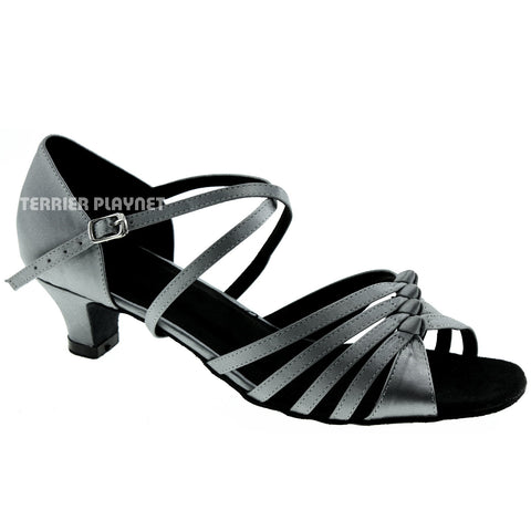 Silver Gray Women Dance Shoes D958