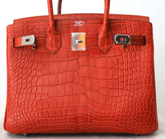 Hermes Bag Alligator