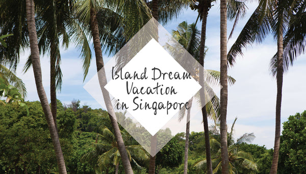 Island Dream Vacation in Singapore